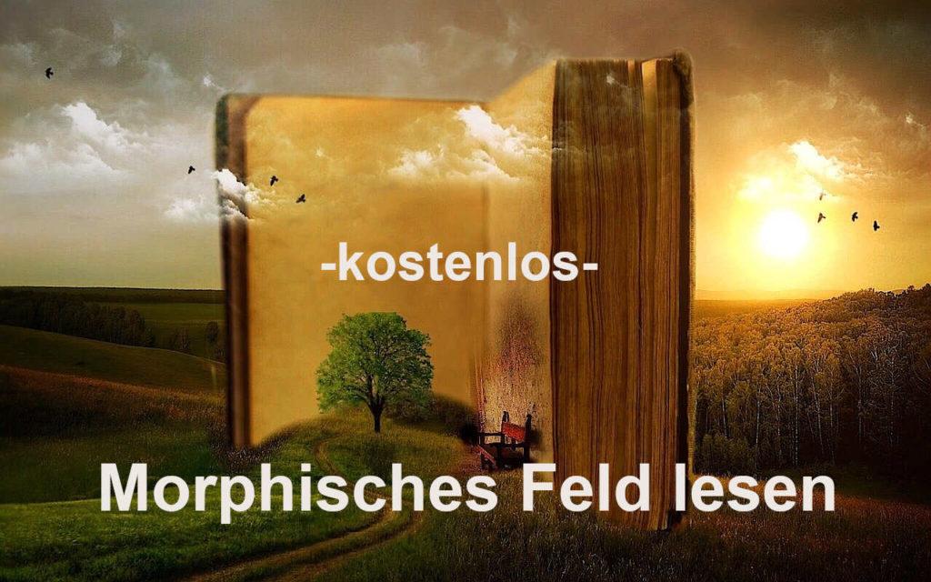 im morphischen Feld lesen kostenlos