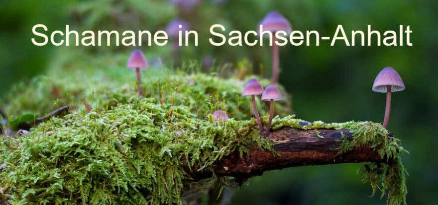 Schamane in Sachsen-Anhalt
